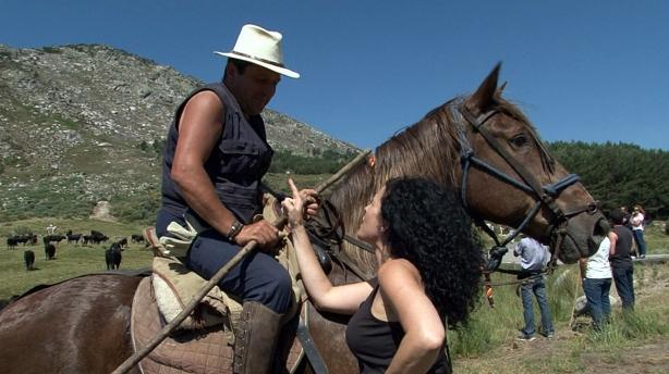 Cabalgan semanas llevando el ganado a los pastos frescos de la Sierra de Gredos.